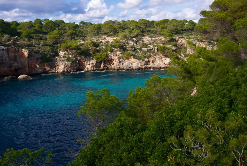 Sie träumen von einem Leben auf Mallorca? Wir bieten die passende Immobilie.